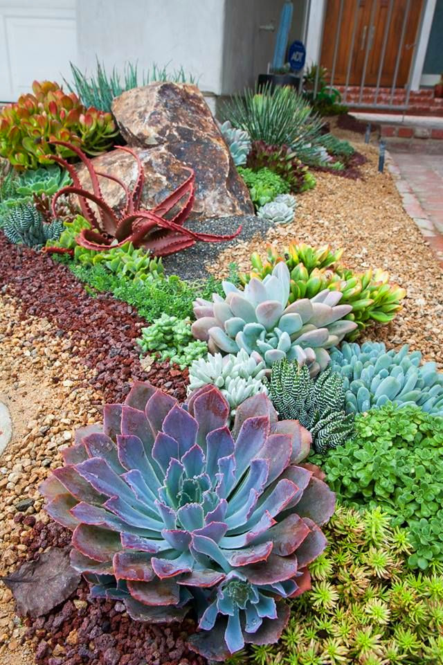 40+ Amazing Succulents Garden Decor Ideas For 2019;Succulent diy;Succulent indoor;Succulent garden;Succulent garden design