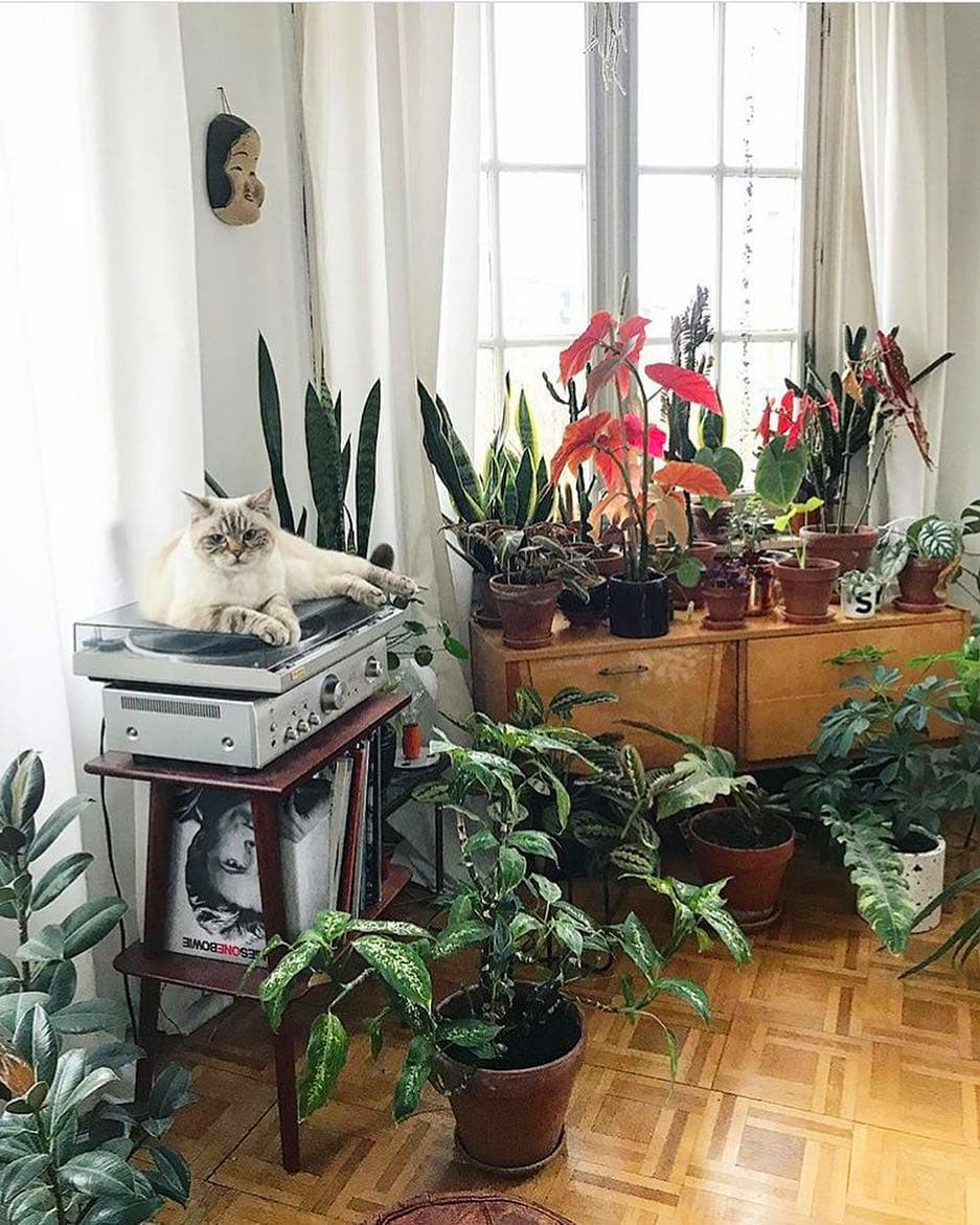 80 DIY Plant Stand Ideas To Fill Your Room With Greenery