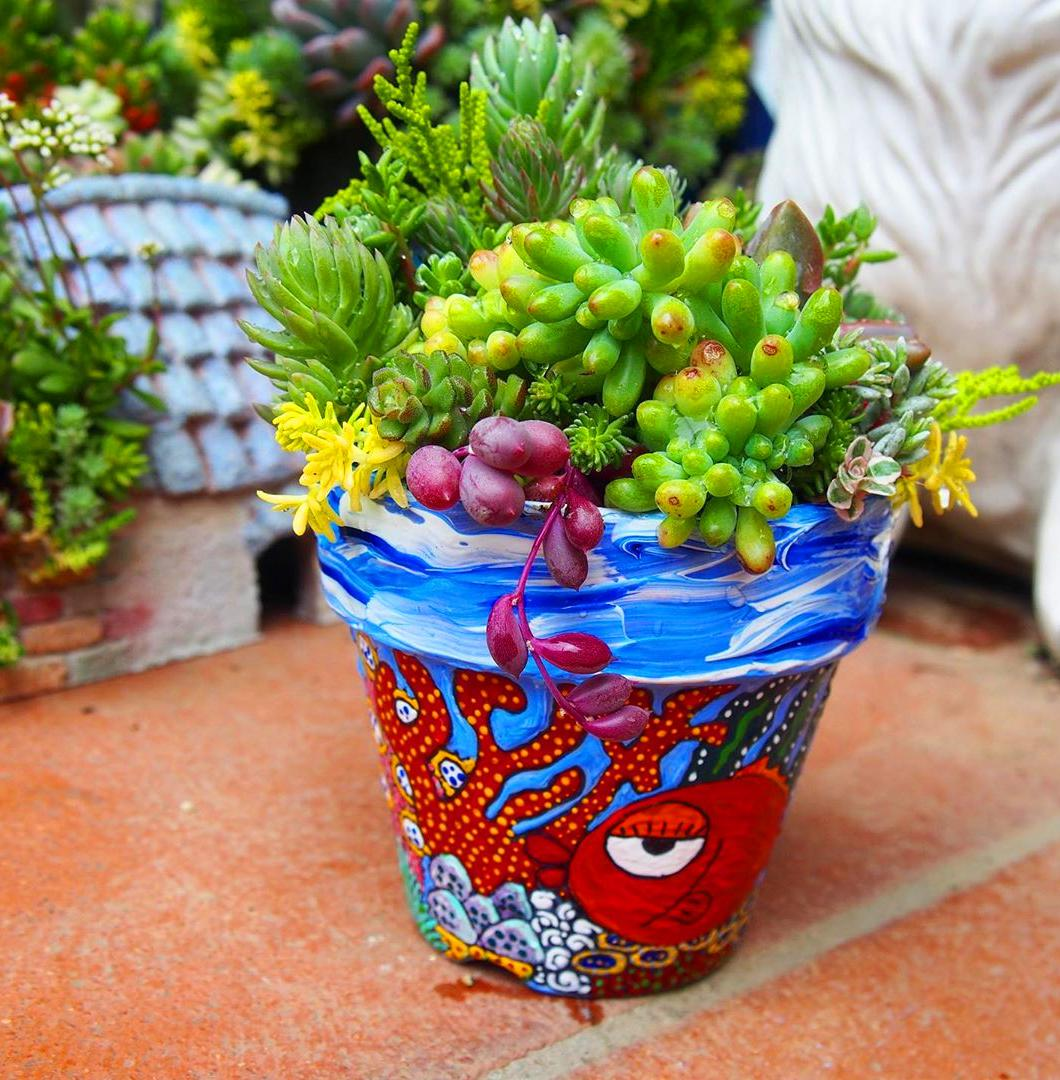 60+ DIY Hanging Succulent Ball Sphere Planter Instruction