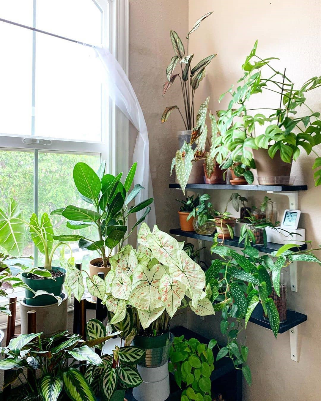 70 Beautiful Pots and Planters to Beautify Your Small Spaces