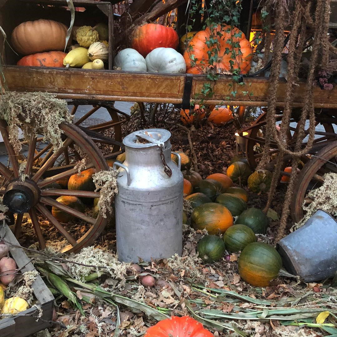 56 Cool Outdoor Halloween Decorations Ideas #halloweenoutdoordecor #Halloween