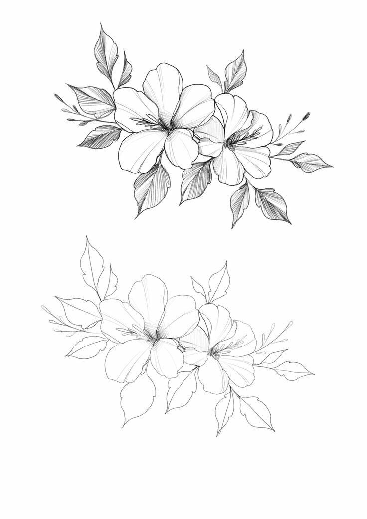 32 Beautiful Flower Drawing Information ideas 2020